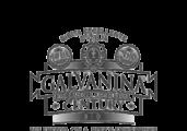 galvanina_bn_1